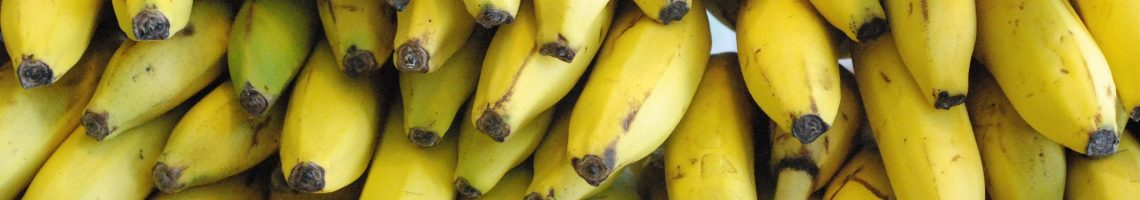 bananen export global fresh fruit
